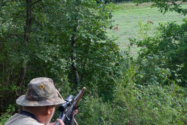 chasse à tir
